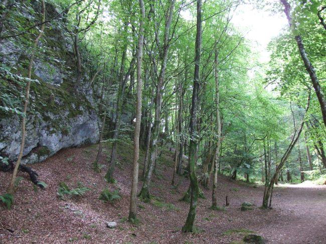 Dooney Rock, Lough Gill, County Sligo.